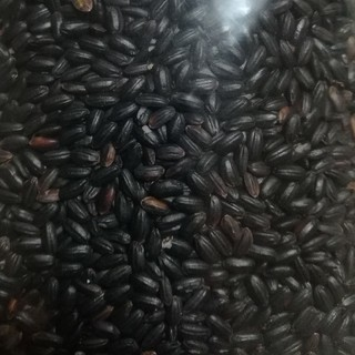 古代米 黒米 800g