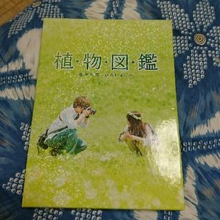 三代目 J Soul Brothers - 植物図鑑DVD