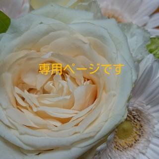 ツモリチサト(TSUMORI CHISATO)の専用 新品 ツモリチサトジュエリー ネコ ダイヤ リング (リング(指輪))