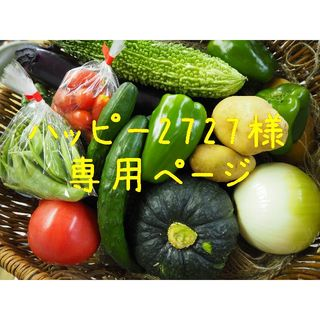 ハッピー2727様専用ページ(野菜)