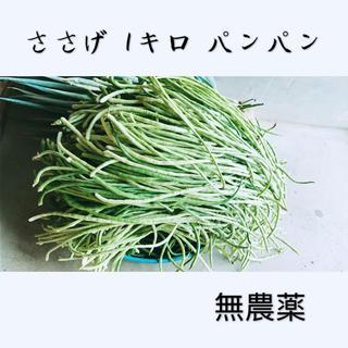 激安 ササゲ ささげ 美味しい 健康夏野菜 1キロ 箱パンパン
