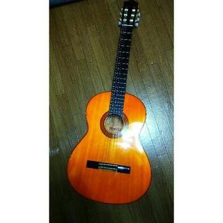 Morris M-20 クラシックギター オマケとしてKORG RP-C1(クラシックギター)