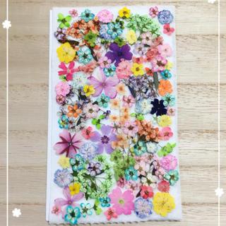 【押し花 素材】カラフルな小花セット157(各種パーツ)