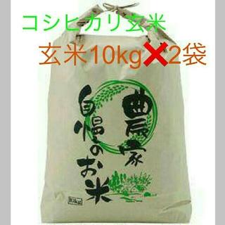 7月18日発送29年度滋賀のコシヒカリ玄米20kg 10kg✖2袋お米送込