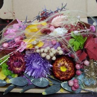 おすそわけカラフル花材mix(ドライフラワー)