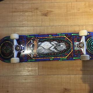 ◯ スケートボード スケボー element complete ボーンズ