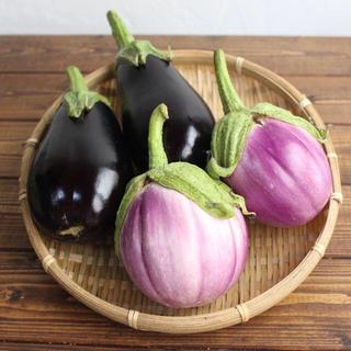 野菜セット ロッサビアンコ 米なす 約1kg 産地直送 農薬不使用
