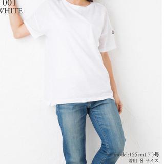 モンクレール(MONCLER)のモンクレール☆レディース Tシャツ(Tシャツ(半袖/袖なし))