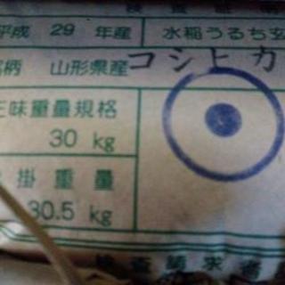 山形県産【コシヒカリ】検査 1等米 玄米30kg 29年産!!