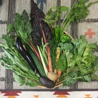 無農薬野菜セット他 同梱、送料割引できます…様(野菜)