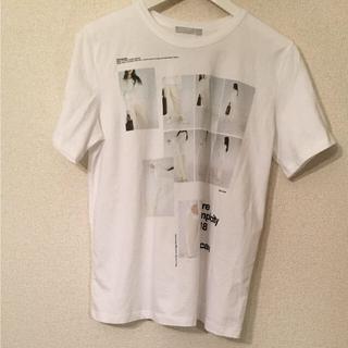 ZARA - ザラ ティシャツ