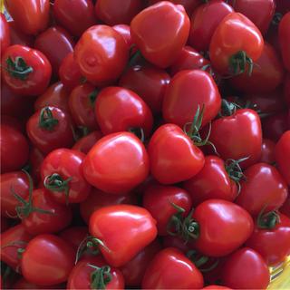 トマトベリー☆1キロ(野菜)