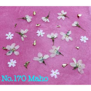 ♡押し花素材♡桜、バーベナ、金箔♡(各種パーツ)
