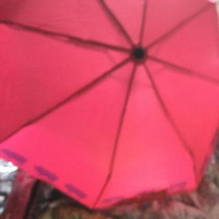 ドラッグストアーズ(drug store's)のドラックストアーズの非売品の傘とケースのセツト(その他)
