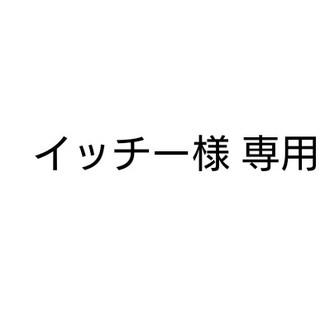 イッチー様 専用(その他)