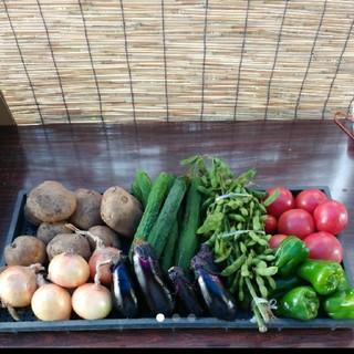 野菜詰め合わせ(野菜)
