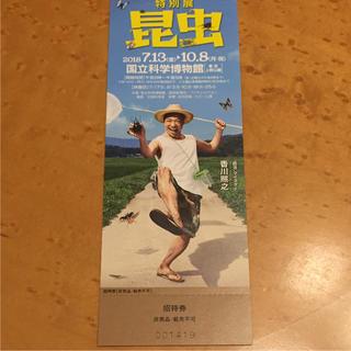 特別展 昆虫 招待券 1枚(美術館/博物館)