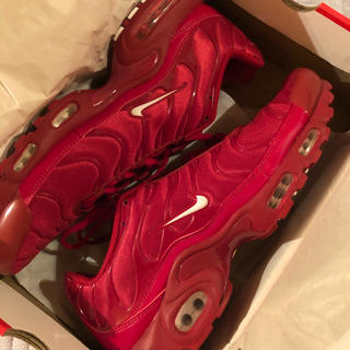 NIKE - NIKE AIR MAX PLUS 29cm
