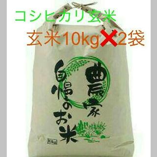 7月19日発送29年度滋賀のコシヒカリ玄米20kg 10kg✖2袋お米送込