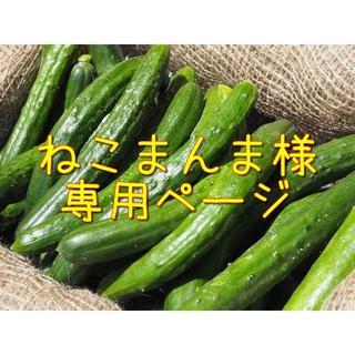 ねこまんま様専用ページ(野菜)