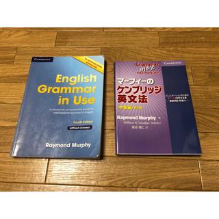 ケンブリッジ英文法 grammar in usa 中古(参考書)