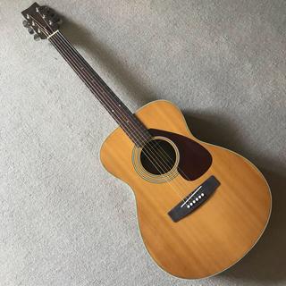 ヤマハ(ヤマハ)のアコースティックギター ヤマハ FG-250 グリーンラベル YAMAHA(アコースティックギター)