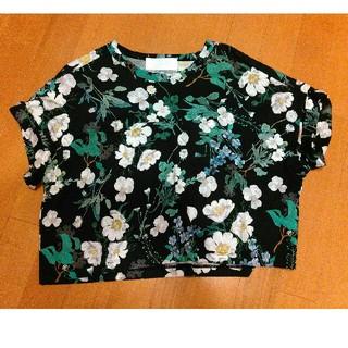 mame - 未使用新品mame kurogouchi花柄Tシャツ