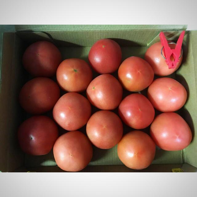 トマト(2S)…1kg 食品/飲料/酒の食品(野菜)の商品写真