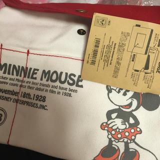 Disney - ミニーちゃんフラットケース