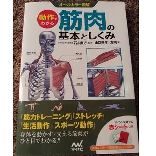 筋肉の基本としくみ(ビジネス/経済)