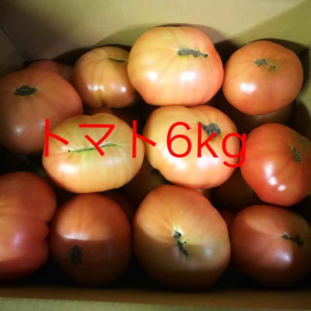 トマト規格外6キロ 食品/飲料/酒の食品(野菜)の商品写真