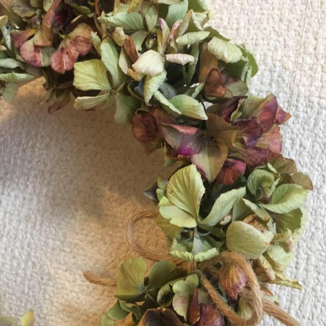 秋色紫陽花のリースグリーンブラウンとグリーンリース ハンドメイドのフラワー/ガーデン(ドライフラワー)の商品写真