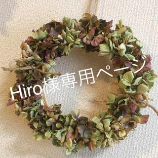秋色紫陽花のリースグリーンブラウンとグリーンリース(ドライフラワー)