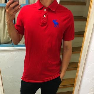 アバクロンビーアンドフィッチ(Abercrombie&Fitch)の美品 アバクロ ビッグムース ポロシャツ サイズL ラルフローレン  ラコステ(ポロシャツ)