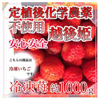 冷凍苺1kg ×2個 合計2kg 越後姫 定植後化学農薬不使用(フルーツ)