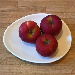 アフタヌーンティー(AfternoonTea)のナイジェラローソン たまご型のお皿 コンランショップ購入イギリス雑貨(食器)