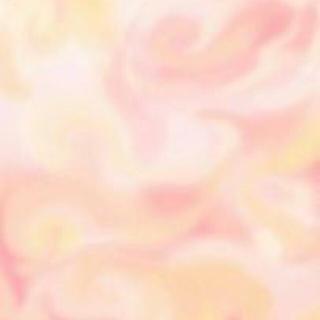 Disney - ダッフィー&シェリーメイ