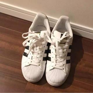 アディダス(adidas)のAdidas SUPERSTAR ホワイト(スニーカー)