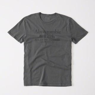 アバクロンビーアンドフィッチ(Abercrombie&Fitch)のアバクロ ロゴT 半袖 ウォッシュグレー アバクロ グレー クルーネック A&F(Tシャツ/カットソー(半袖/袖なし))