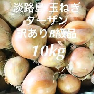 農家直送 淡路島 玉ねぎ 訳ありB級品10kg以上 早い物勝ち(野菜)