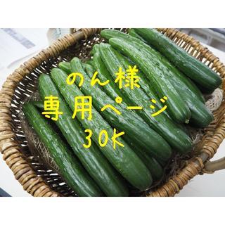のん様専用ページ(野菜)