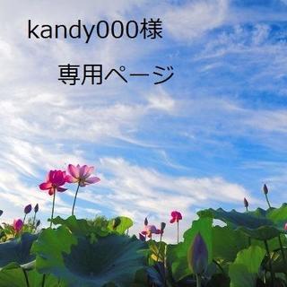 kandy000様 専用ページ(スニーカー)