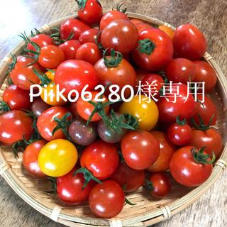 Piiko6280様専用ミニトマトミックス2kg(野菜)