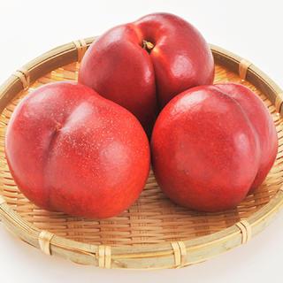 ネクタリン サマークリスタル 1キロ 約10玉(フルーツ)
