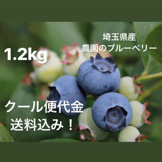 新鮮な農園のブルーベリー 1.2キロ(フルーツ)