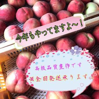 山梨県産 桃 なつっこ 2箱(フルーツ)