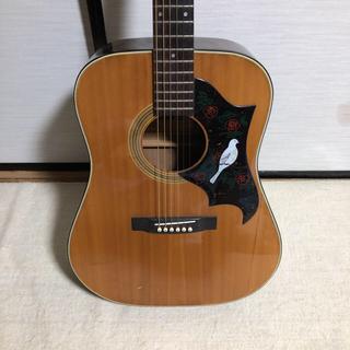 Morris W-13(アコースティックギター)