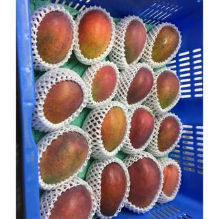 沖縄県産‼︎家庭用マンゴー1キロ(フルーツ)