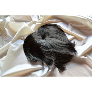 分け目・白髪隠し&簡易ウイッグ 黒&やや褐色  (その他)