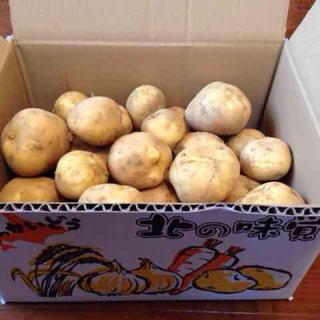 【送料無料】北海道産じゃがいも10kg(野菜)